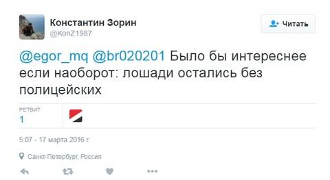 Конный отряд спецназа остался без коней: соцсети повеселила история с бунтом цыган (1)