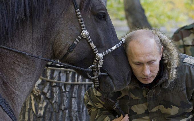 Путін і коні: з'явилися нові жарти і відео