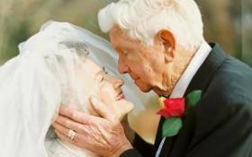 Історія кохання: пара відзначила 63 роки сімейного життя романтичною фотосесією