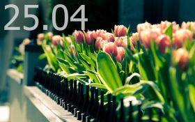 Прогноз погоды в Украине на 25 апреля
