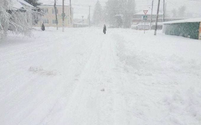 Одещину накрила снігова стихія: з'явилися фото і відео