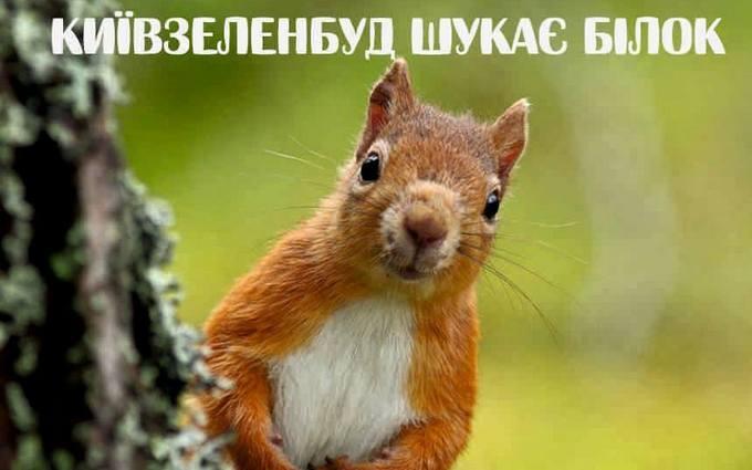 Киевские власти позабавили вакансией специалиста по белкам