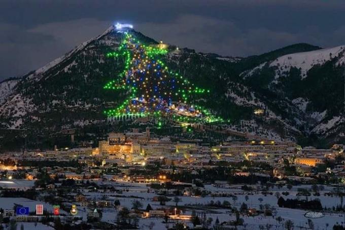 Самые оригинальные и необычные новогодние елки в мире: впечатляющие фото и видео (4)
