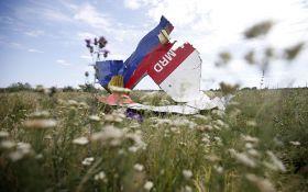 Загибель MH17 на Донбасі: у Луценка зробили пропозицію свідкам