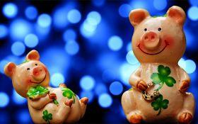 Новий рік 2019: як правильно зустрічати рік Жовтої Земляної Свині