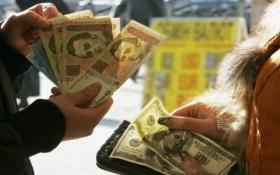 Когда доллар прыгнет выше 30 грн: валютный прогноз до конца года
