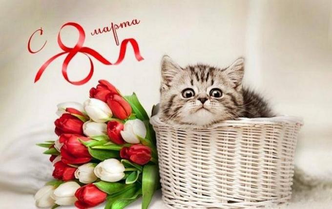 Оригинальные и красивые поздравления с 8 марта - стихи, картинки и проза (6)