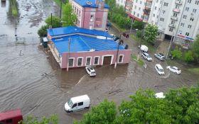 Ливень превратил улицы Львова в реки: появились фото и видео