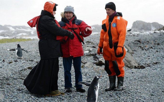 В сети продолжают смеяться над главой РПЦ с пингвинами: появились веселые картинки