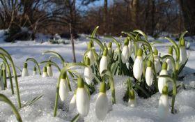 Весняні морози: синоптики попередили про повернення зими