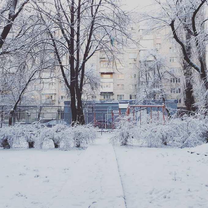 Киев засыпало снегом: в сети опубликованы яркие фото и видео (5)