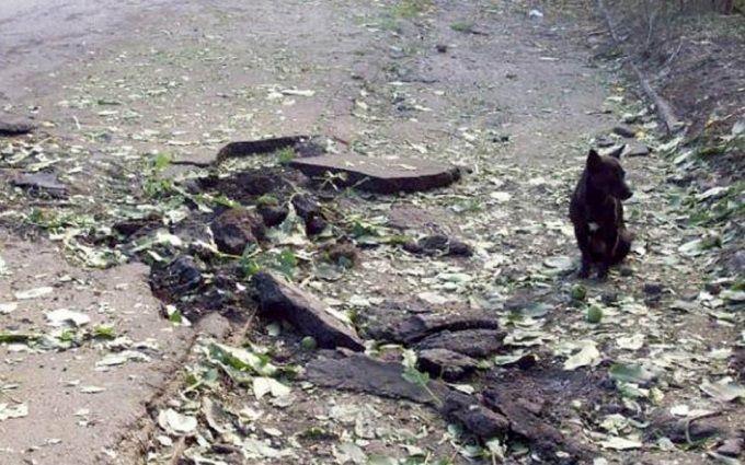 Бойовики ЛНР обстріляли свою територію й звинуватили Україну: з'явилися докази