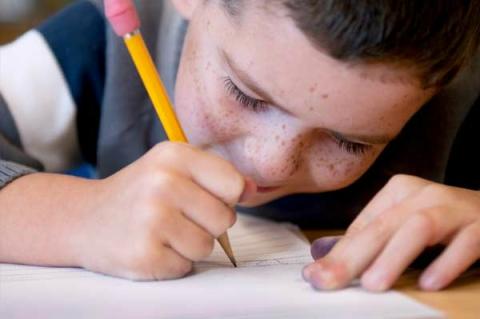 """К началу учебного года """"Розетка"""" рассказала о простых карандашах для школьников"""