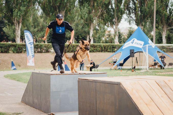 Чотирилапі офіцери: службові собаки з усієї України з'їхалися до Дніпра