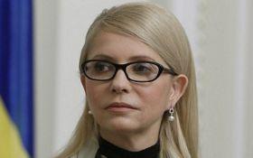 Як у княгині: в декларації Тимошенко знайшли цікаву деталь