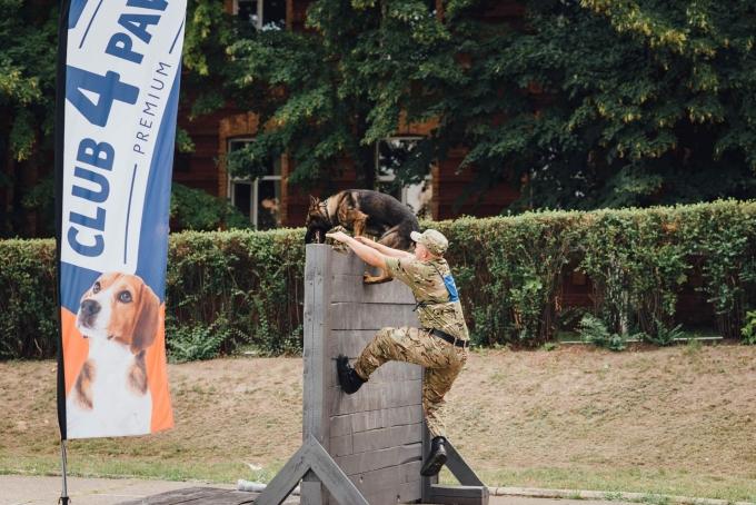Чотирилапі офіцери: службові собаки з усієї України з'їхалися до Дніпра (9)