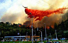 Велике місто Ізраїлю евакуюють через пожежі: з'явилися вражаючі фото і відео