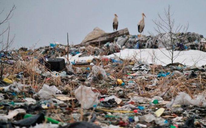Трагедія на львівському звалищі: Луценко зробив заяву