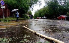 Среди погибших в результате урагана в Подмосковье есть украинец - росЗМИ