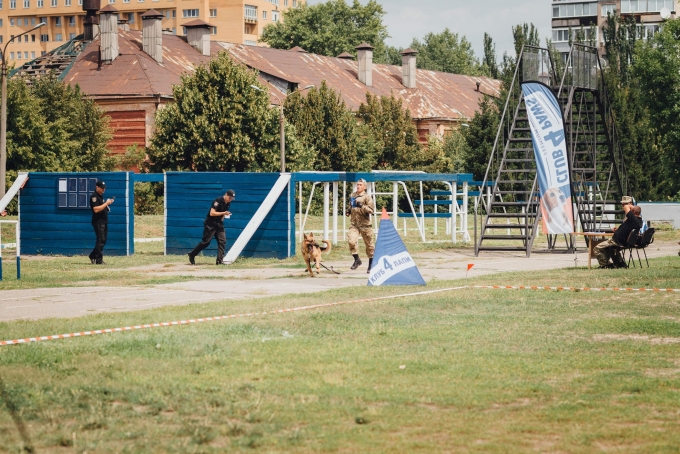 Четырехлапые офицеры: служебные собаки со всей Украины съехались в Днепр (4)