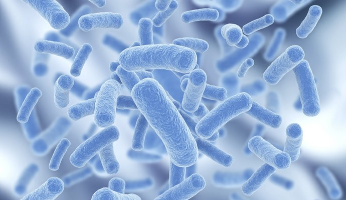 На бачке унитаза бактерий меньше, чем на смартфоне
