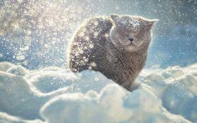Снежный апокалипсис в Украине: названы области, которые заметет снегом