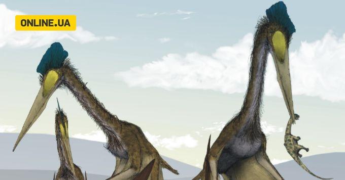 Крижаний дракон: вчені описали невідомих раніше летючих динозаврів