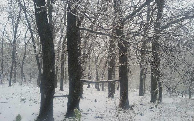 """""""Я никому не буду вытирать сопли"""": мэр Днепра прокомментировал снежный коллапс в городе"""