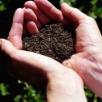 Подготовка почвы кпосеву ипосадке