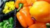 Хранение овощей взимнее время