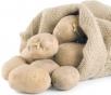 Готовим картофель кпосадке