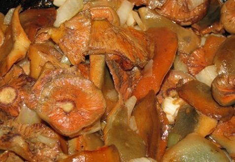 Рецепт - Жареные рыжики