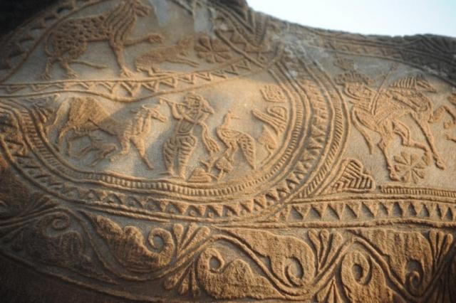 Интересные факты про искусство стрижки верблюдов