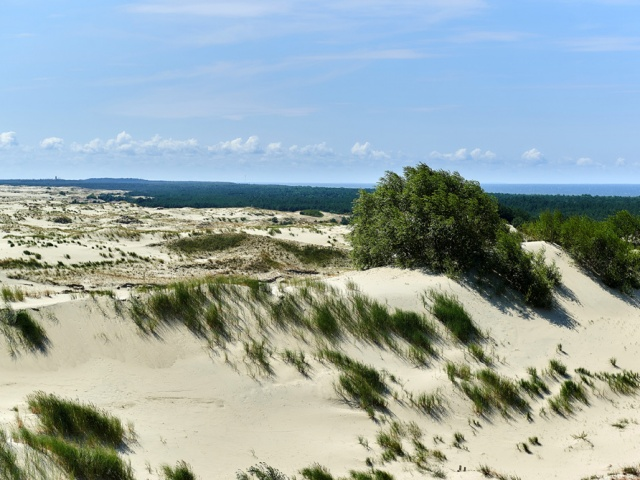 Если времени мало, можно ездить по косе на автомобиле, благо проблем с парковками нет. Можно взять напрокат велосипед, а можно бродить по лесным дорогам пешком, вооружившись фотокамерой. Купаться можно на любом побережье: на косе лучшие и чистые пляжи