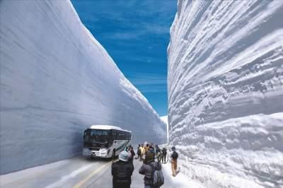 Посмотреть на эти снежные стены в Японии приезжают толпы туристов. Фото