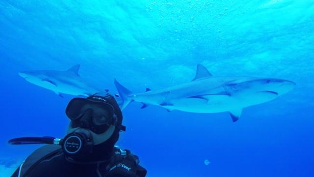 Daymond John Shark Week.jpg