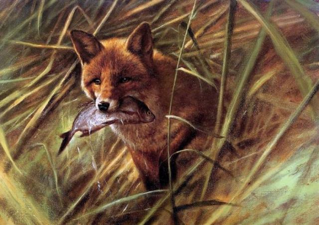 животные в живописи Rien Poortvliet - 10