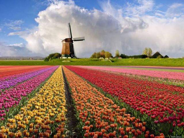 Отдых весной 2016: 5 городов Европы, которые стоит увидеть