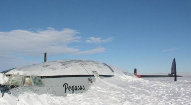Фото: Странные находки, обнаруженные учеными в Антарктиде (Фото)
