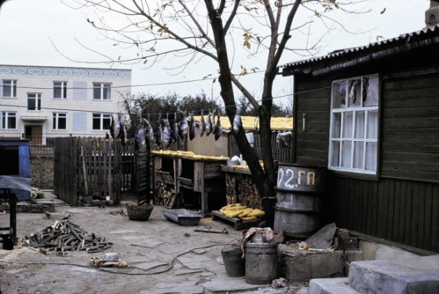 Сушка кукурузы и рыбы в доме колхозника. СССР, Ростовская область, 1975 год.