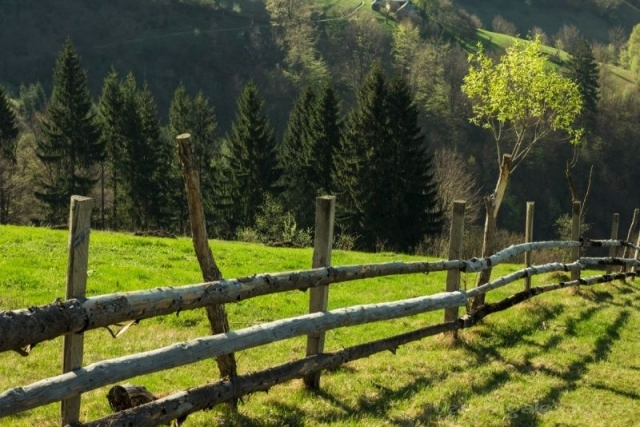 Фото: Рай на земле: захватывающая дух красота весенних Карпат (Фото)