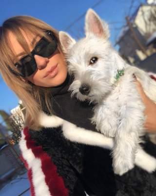 Украинские знаменитости показали своих домашних животных. Фото