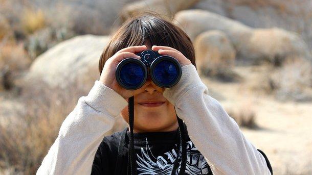 Общительность можно определить по распорядку дня. Фото: pixabay.com