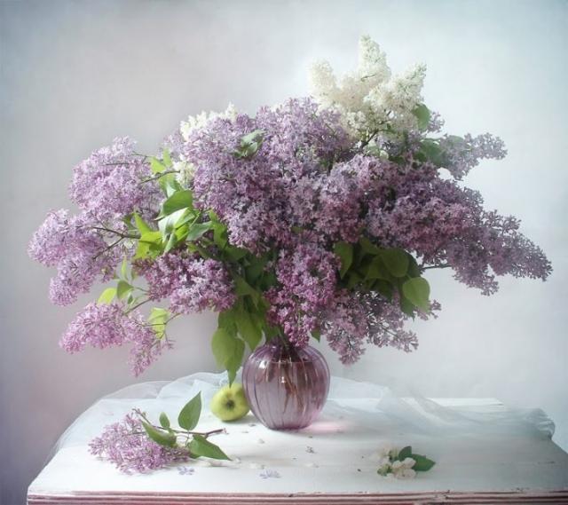 натюрморт фото марина Филатова -4 -06