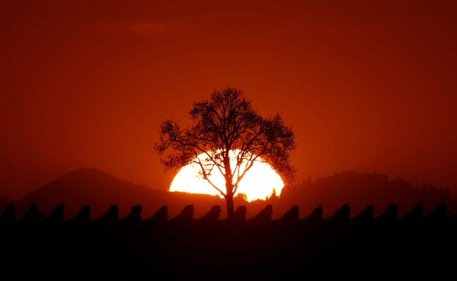 Фото: Золотое время: красивые пейзажи уходящей осени (Фото)