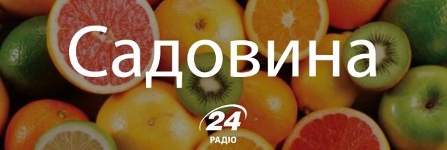 13 колоритних українських слів, незамінних на кухні - фото 146972