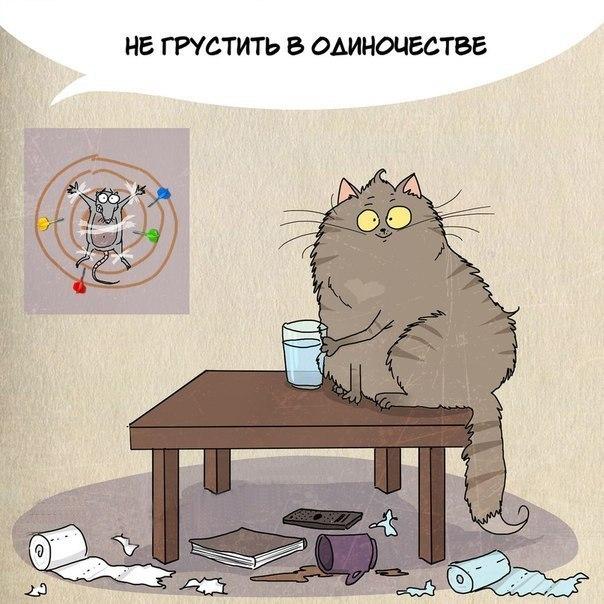 Чему поучиться у котиков