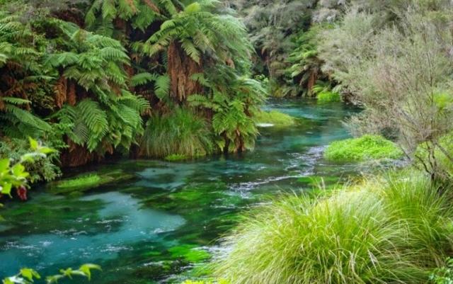 Река Вайху в Новой Зеландии