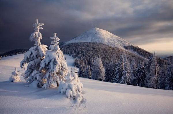 Зима в горах. Фантастическая красота украинских Карпат (ФОТО)
