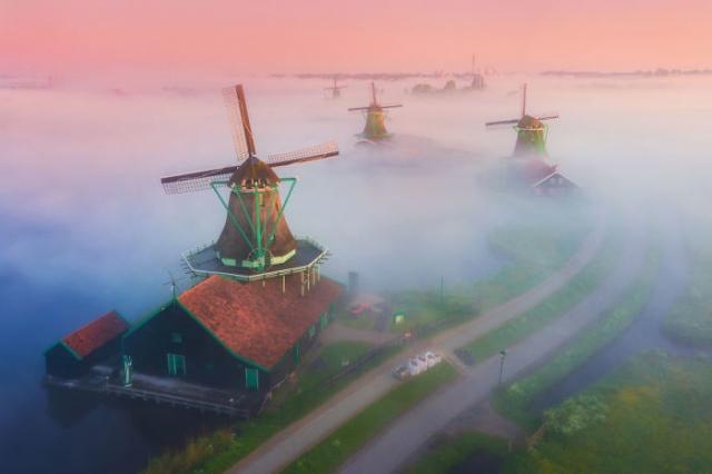 Волшебное утро в Нидерландах с ветряными мельницами, поднимающимися из тумана.